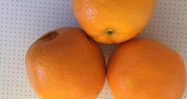 Fruits such as oranges and lemons can supply your body with vitamin C