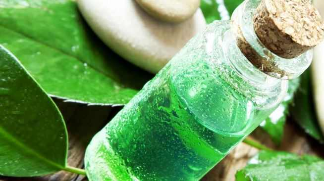 Tea tree oil remedy for cysts