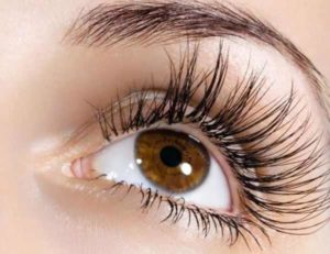 Does Vaseline Help Eyelashes Grow Long and Thick? Is Petroleum Jelly Good for Eyelashes?
