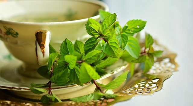 peppermint-has antispasmodic properties that can be used to prevent nausea