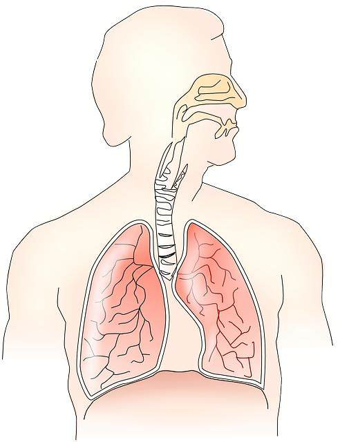 Crackles in Lungs Meaning, Crackling Lung Sound When Lying Down Causes, Treatment