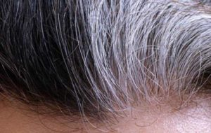 Aging Hair That is Frizzy, Dry: Signs & Best Products for Texture Change
