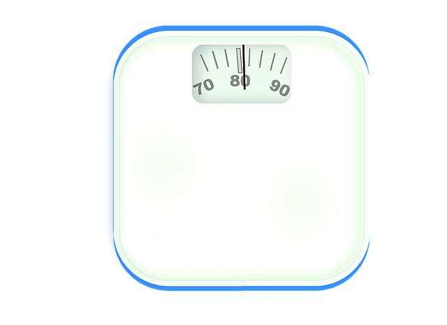 Best Body Fat Scale 10 Most Accurate Scales Reviews 2019