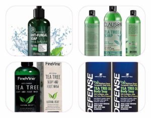 10 Best Antibacterial Body Wash Products Reviewed [2019]